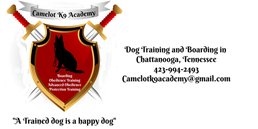 Camelot K9 Academy | Chattanooga Dog Trainers